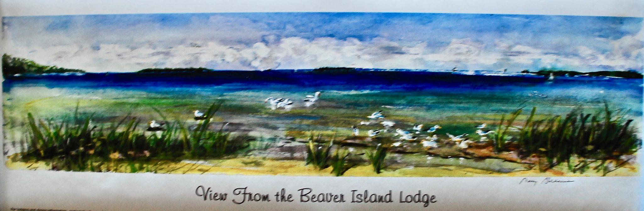 lake michigan view from the beaver island lodge